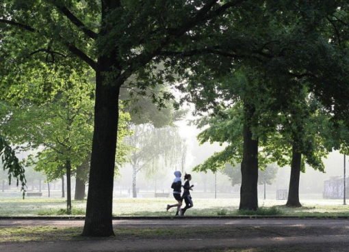 Joggen im Park
